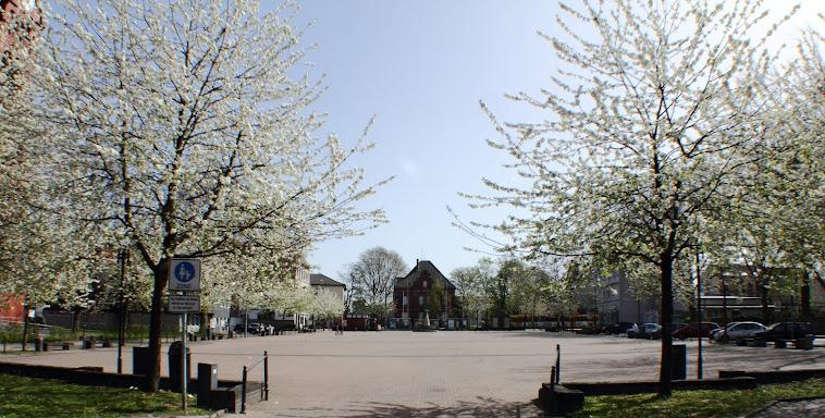 markt in weißen blüten