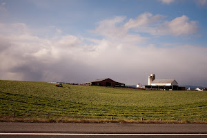 Virginia Farmland