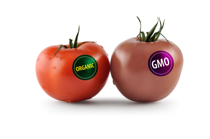 organic food vs genetically modified food The advantages of organic food far outweigh the so  15 advantages of organic food  since they aren't genetically modified to withstand cold and aren't.