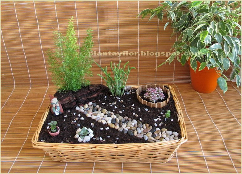 plantas y flores jardiner a en miniatura. Black Bedroom Furniture Sets. Home Design Ideas