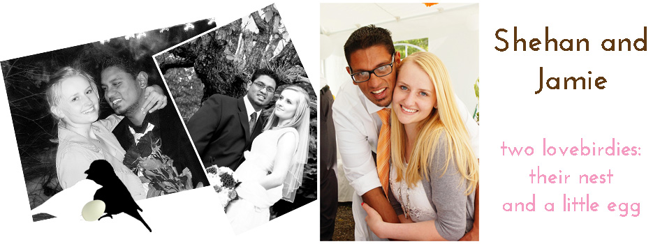 Shehan and Jamie: Two Lovebirdies