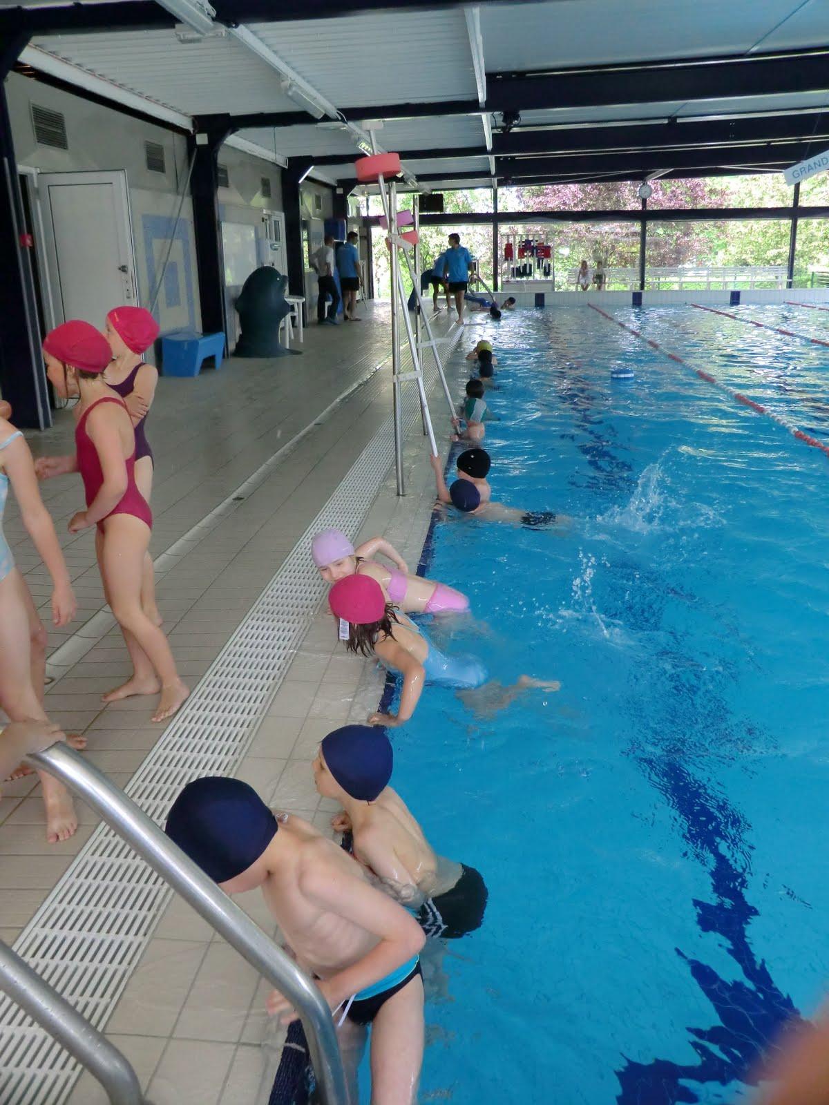 Classes de jules verne a la piscine de roncq le 5 mai for Piscine jules verne