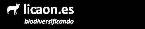 licaon.es
