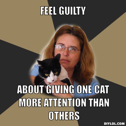 You Funny Lady Meme : Are you one of the crazy cat people girlsaskguys