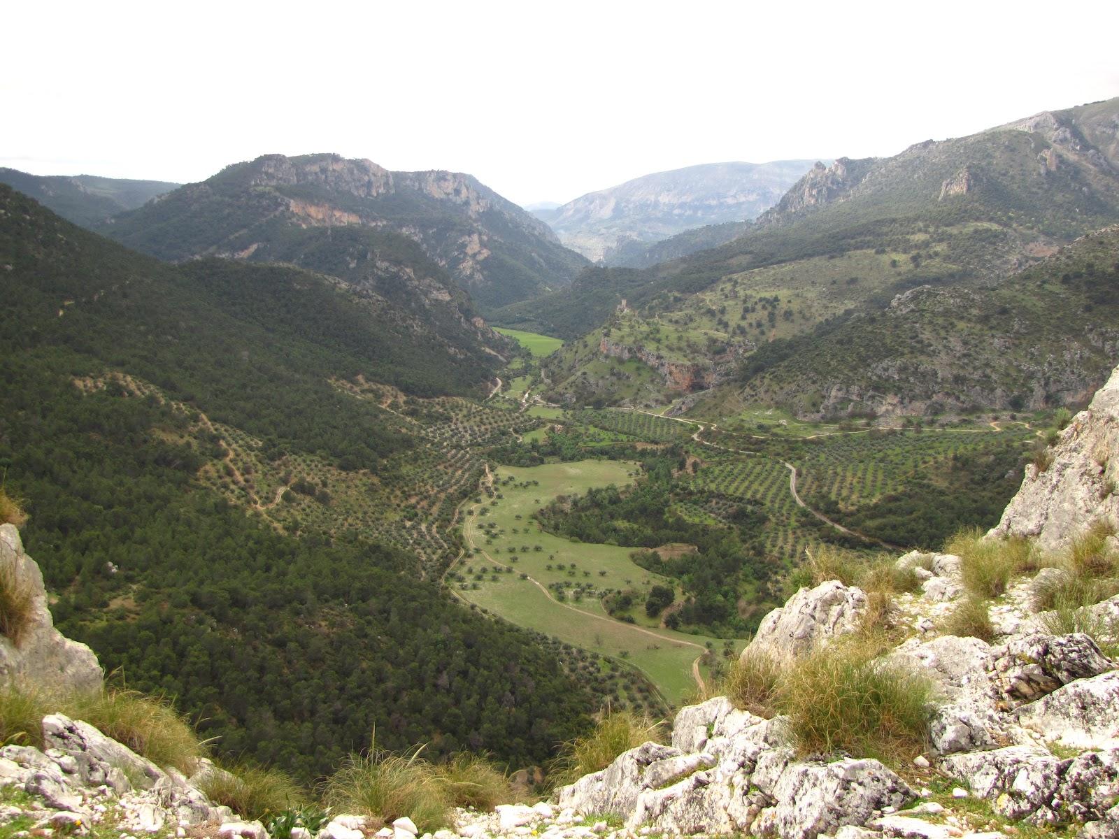 prima Inglés morena en Jaén