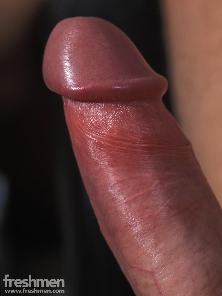 gay stiff dicks and hard cocks