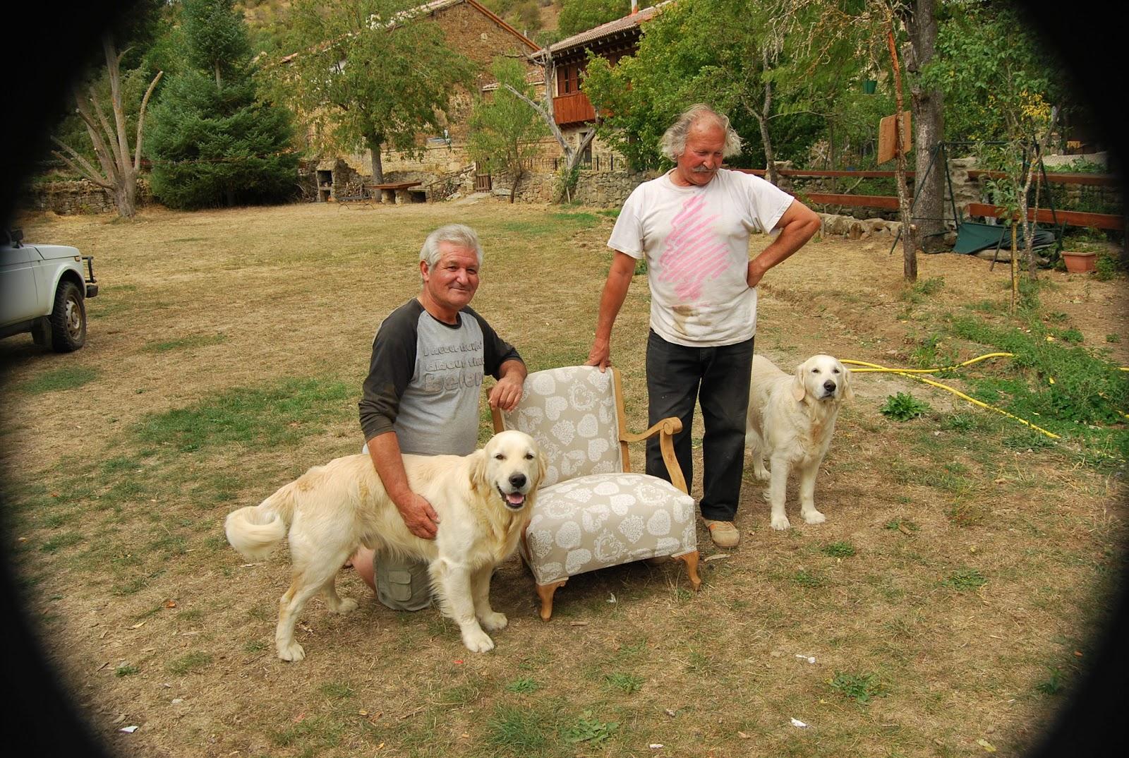 El lance el mercado del pienso para perros por que sea - Pienso para perros de caza ...