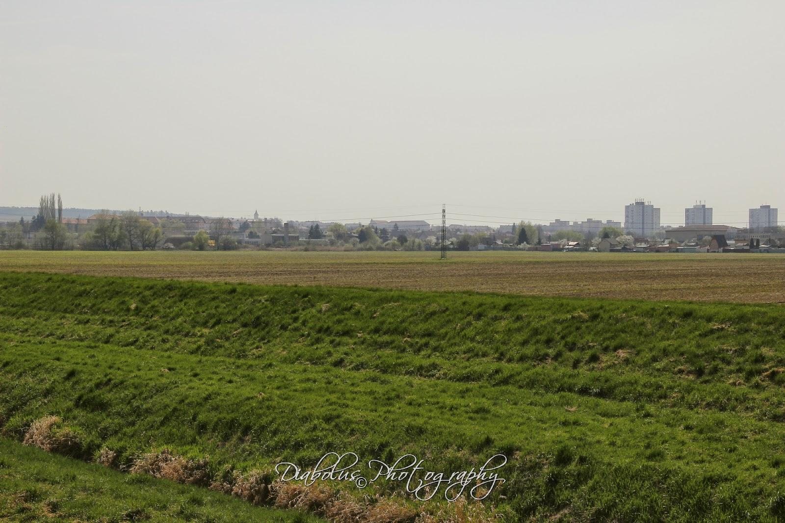 Pohled na Holíč od zahrádkářské osady Baráky