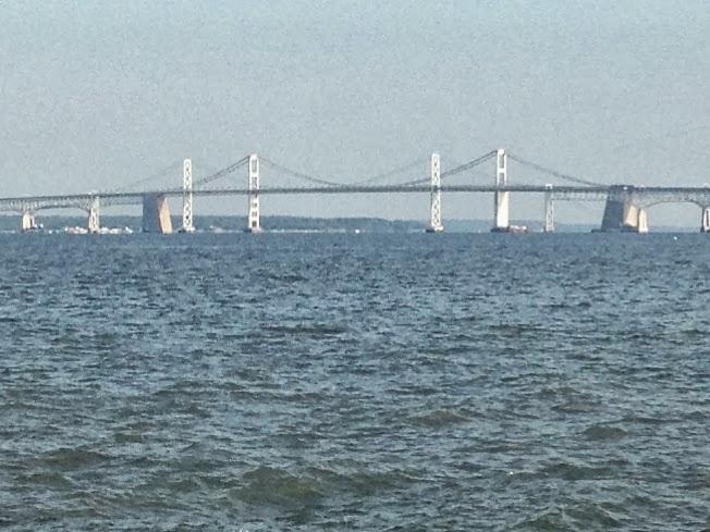 Vote no 39 malley matapeake fishing report for Chesapeake bay bridge fishing report
