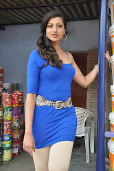Bollywood, Tollywood, ornamental, pleasant, hot sexy actress sizzling, spicy, masala, curvy, pic collection, image gallery