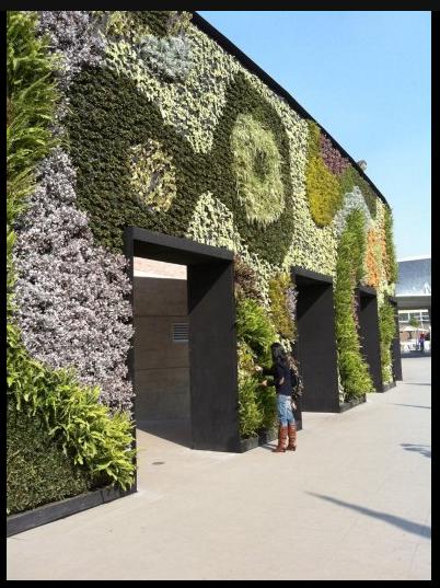 Crealogar jardines verticales en m xico for Jardines verticales mexico