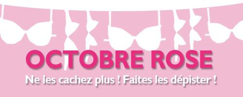 http://littlerenard.blogspot.com/2015/09/octobre-rose.html