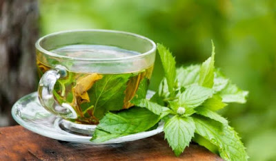 Green Tea Benefits for Stomach Problems