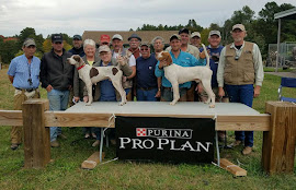 2016 NORTHEASTERN OPEN SHOOTING DOG CHAMPIONSHIP