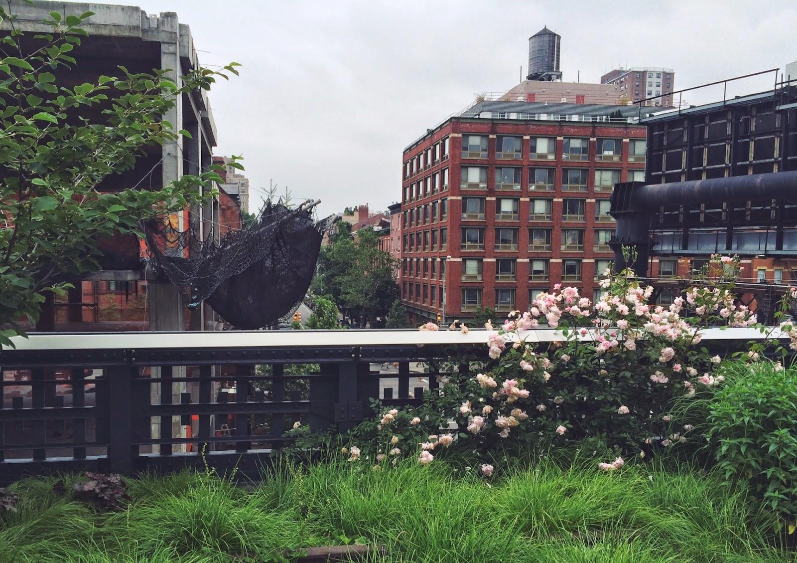 Park, New York