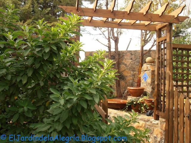 El jard n de la alegr a agua c mo instalar una bomba for Poner piedras en el jardin