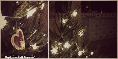 Picea Abies Ikea