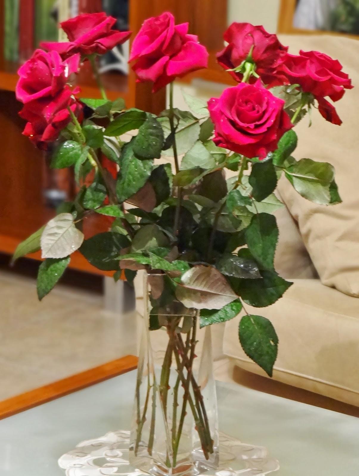 Kuchnia I Podróże Jak Dbać O Róże