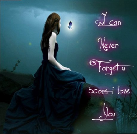 I Can Never Forget You Beautiful Love Quotes On Image Photos Gallery :