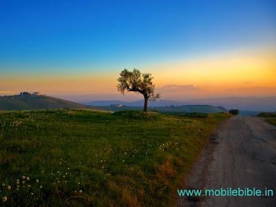 http://2.bp.blogspot.com/-_mDaF-nvg3I/Tj6VUThlJNI/AAAAAAAAANI/dcsQkx6T8Fc/s1600/Nature+Wallpaper+www.mobilebible.in+%25288%2529.jpg
