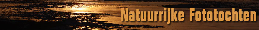 Natuurrijke Fototochten