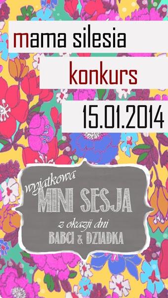 http://mamasilesia.blogspot.com/2014/01/pomys-na-prezent-dla-babci-i-dziadka.html#comment-form