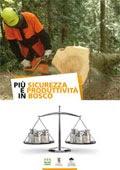 """Scarica gratis la nuova brochure """"Più sicurezza e produttività per il lavoro in bosco"""""""