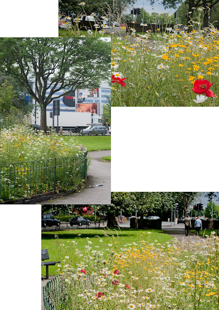 three views of traffic island in Parrs Wood, Didsbury