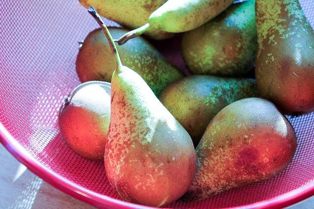 Pocherede pære