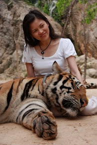 Kanchanaburi, Tiger Temple, Thailand