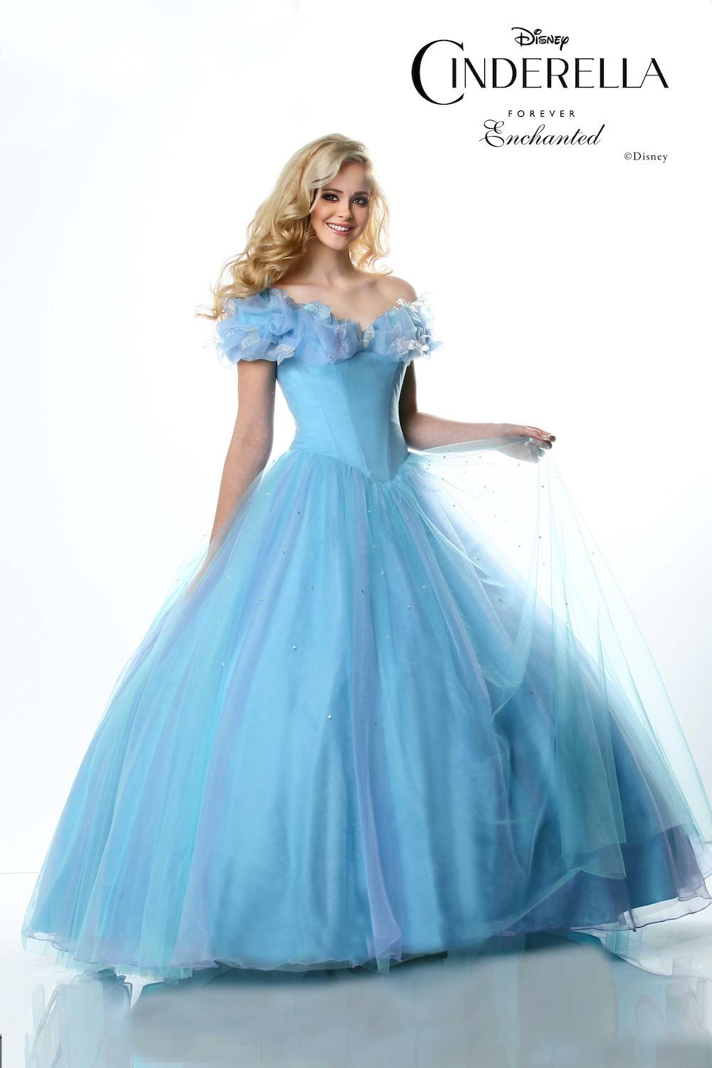 Cinderella Prom Dresses Cinderella Gowns   Prom gowns and wedding bridal