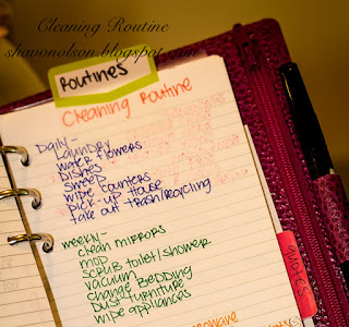 Cleaning Routine | shavonolson.blogspot.com