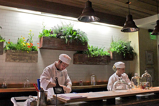 Rain Water Systems Local Restaurants Grow Your Own Herbs