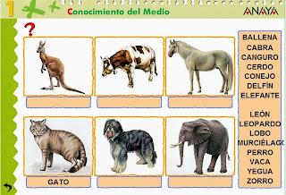 http://www.ceiploreto.es/sugerencias/A_1/Recursosdidacticos/PRIMERO/datos/03_cmedio/03_Recursos/actividades/2losAnimales/act5.htm