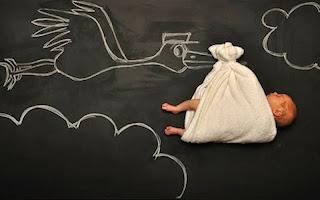 Burung Upeh Terbang membawa Bayi Baru Lahir