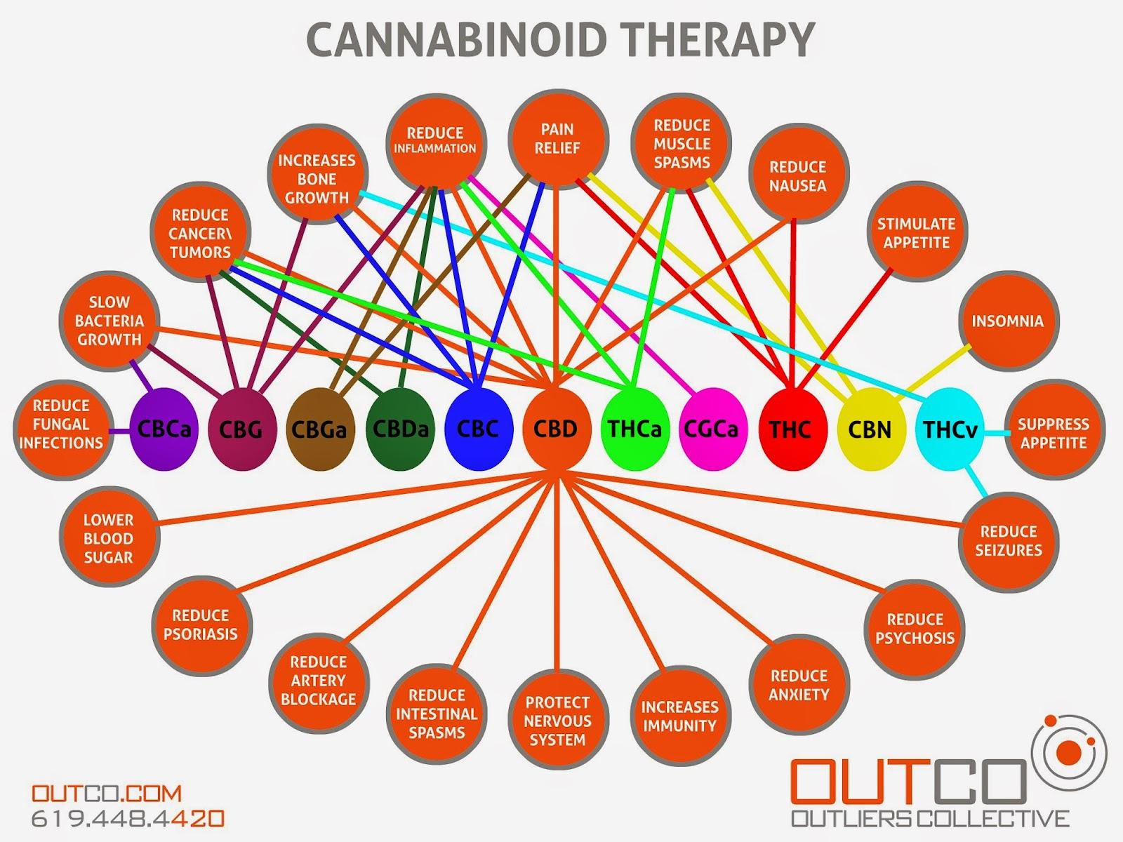 Kanabinol - what it is: medicine or drug 8