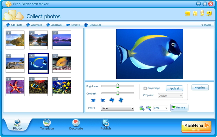 flash player presentation maker
