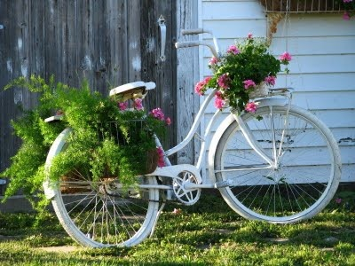 Superb I Love The Pink Geranium In The White Bike Above .and Itu0027s Such A Hearty  Plant That It Works Well In A Wire Basket... The White Of The Bike Gives A  Clean ...