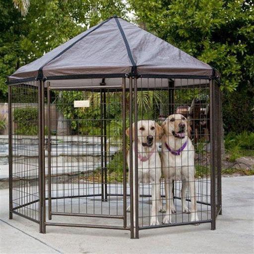 Desain model rumah anjing penjaga diluar rumah