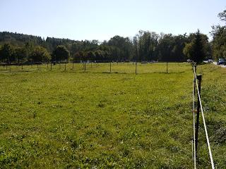 Gebiet des keltisch-römischen Brandopferplatzes an der Straße von Gauting nach Starnberg