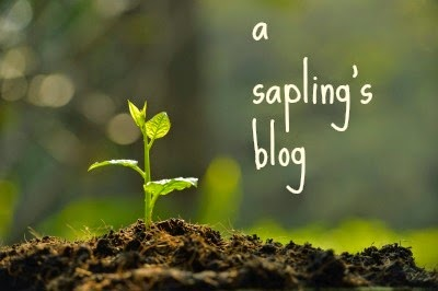 a sapling's blog