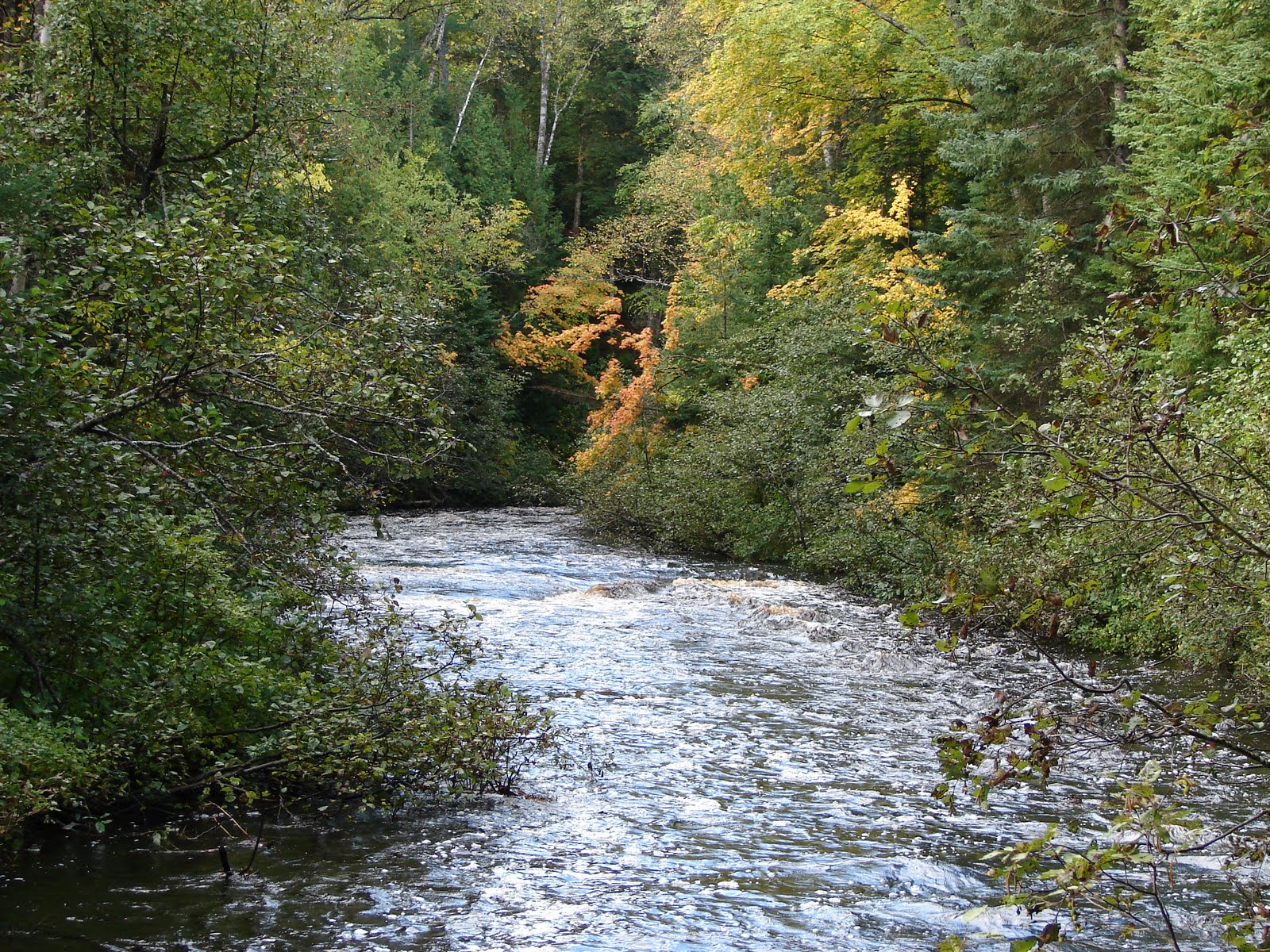 """big two hearted river essay example Free essay: in ernest hemmingway's """"big two-hearted river"""", nick returns home after the war and visits a favorite fishing spot dual sides of nick are shown."""