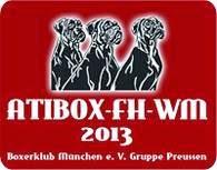 ATIBOX FH