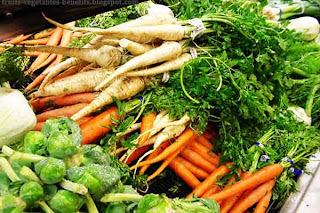 health_benefits_of_eating_vegetables_fruits-vegetables-benefits.blogspot.com(health_benefits_of_eating_vegetables_22)
