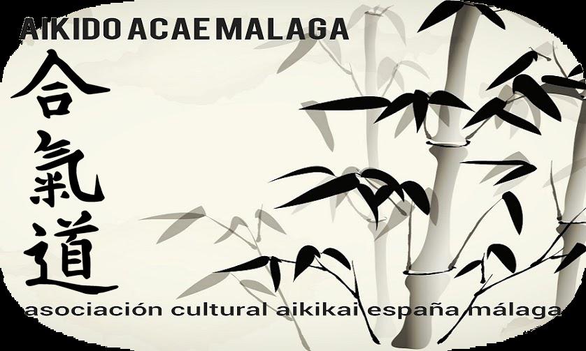 Aikido ACAE Málaga - Defensa Personal