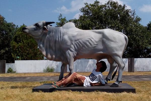 Patung sapi Stasiun Ambarawa
