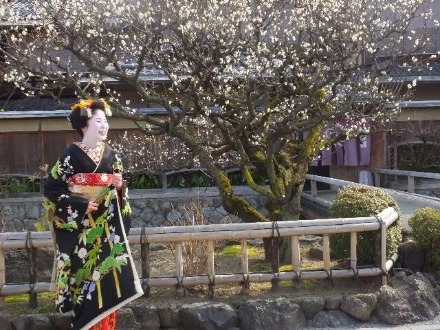 旅館白梅の梅と共に記念撮影。