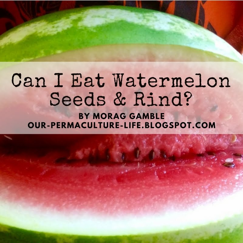 Our permaculture life can i eat watermelon seeds and rind for What parts of a watermelon can you eat