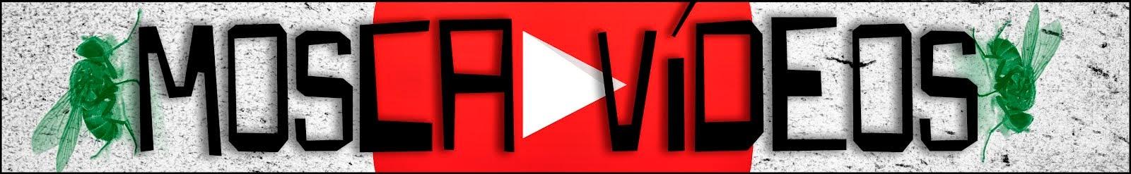 Mosca Vídeos