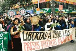Viva a luta do povo Mapuche
